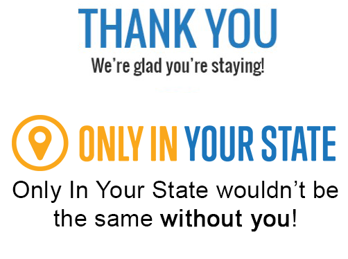 Thank you. We're glad you're staying!