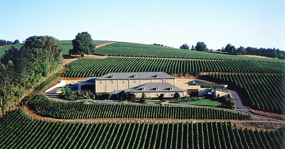 A Girls Trip to the Best Virginia Wineries   Cobalt Chronicles