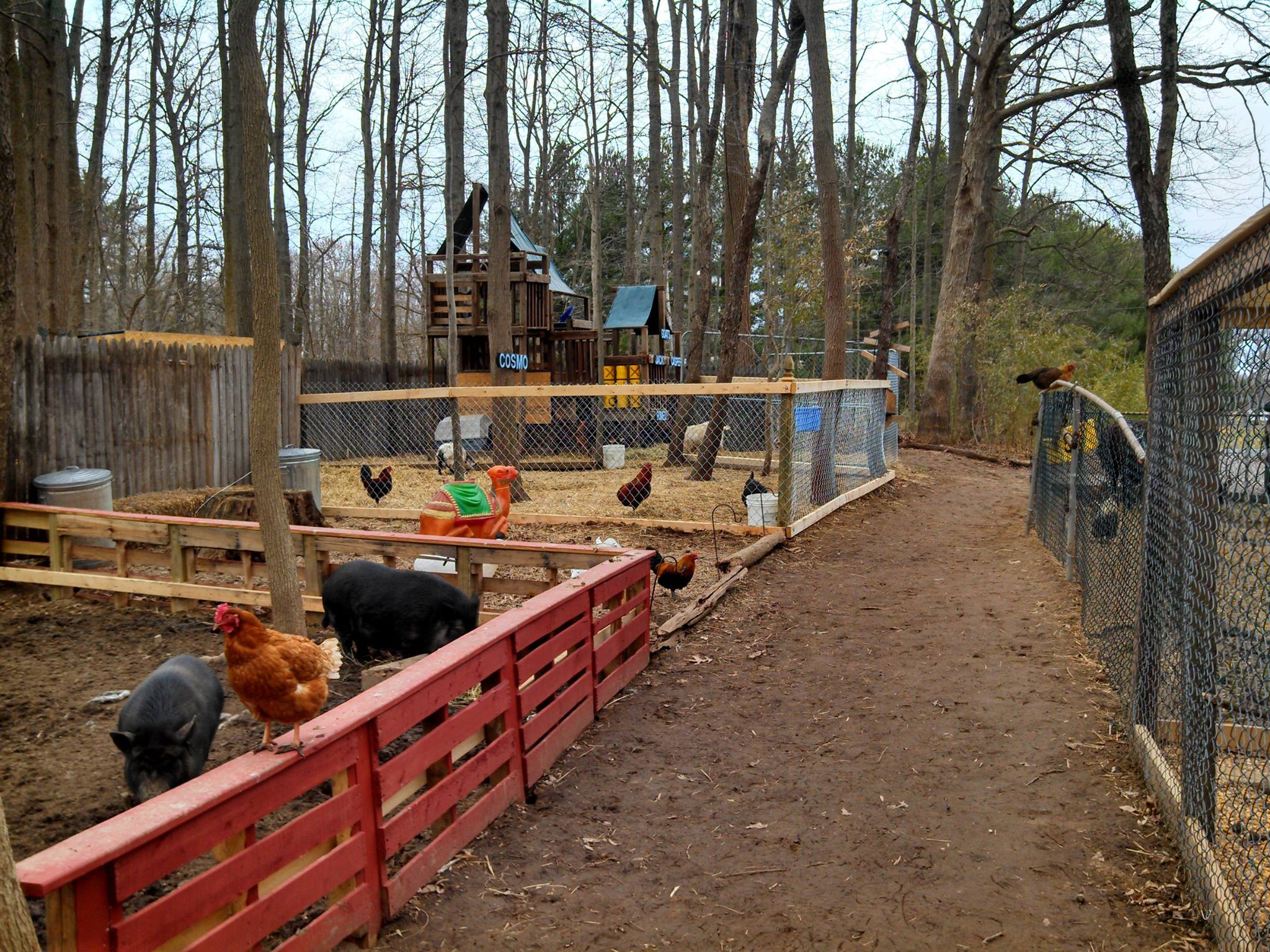 A Wildlife Park In Delaware is great For a family day trip