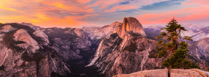 Northern California Newsletter
