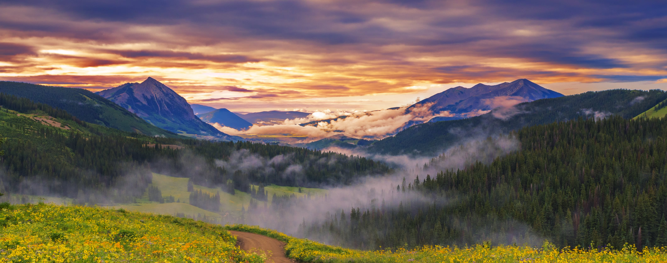 Coloradobanner image