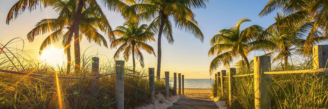 Floridabanner image