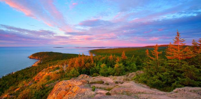 Maine Newsletter
