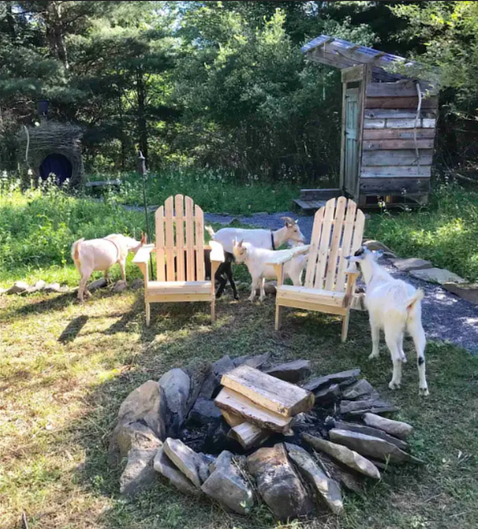 Mariaville Goat Farm Has Its Own Yurt In New York You Can Sleep In