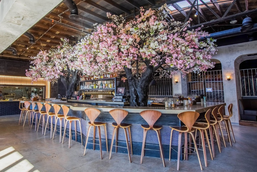 Dine Under A Cherry Blossom Tree At Cloak And Petal Southern California