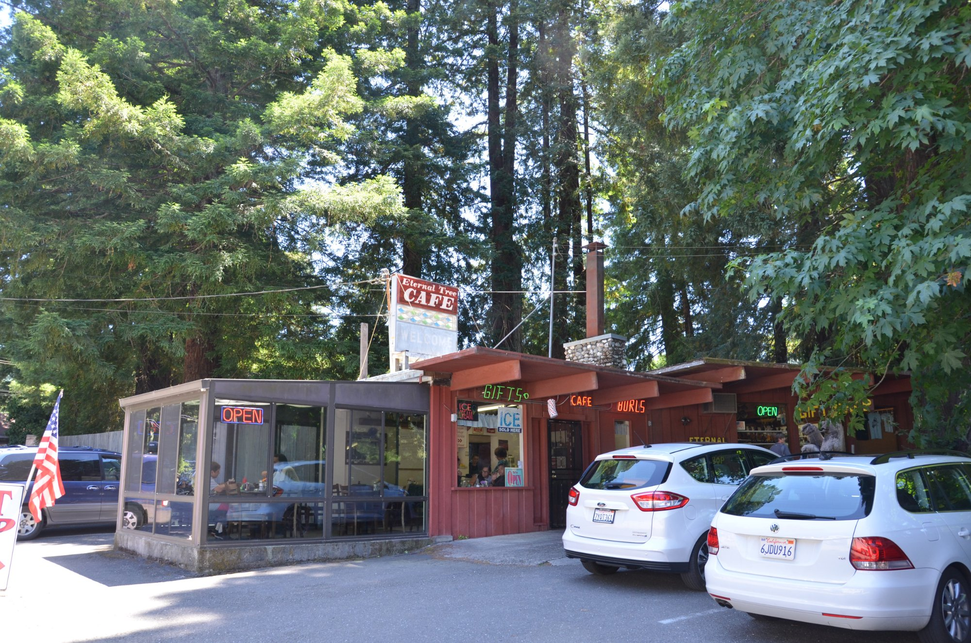 Do You Remember Northern California's Quirky Roadside Attraction, The Eternal Tree House?
