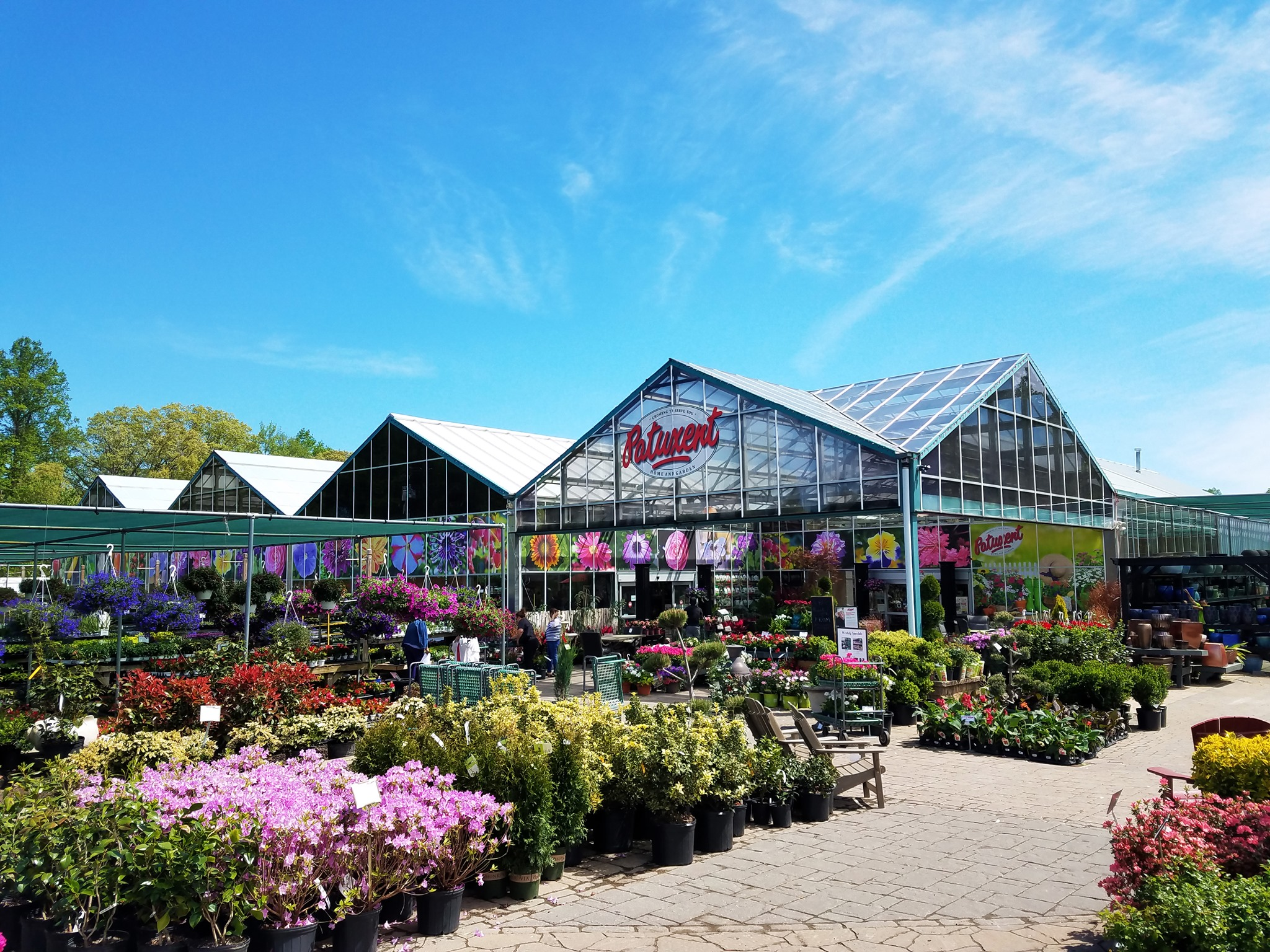 Patuxent Nursery In Maryland Has All Of