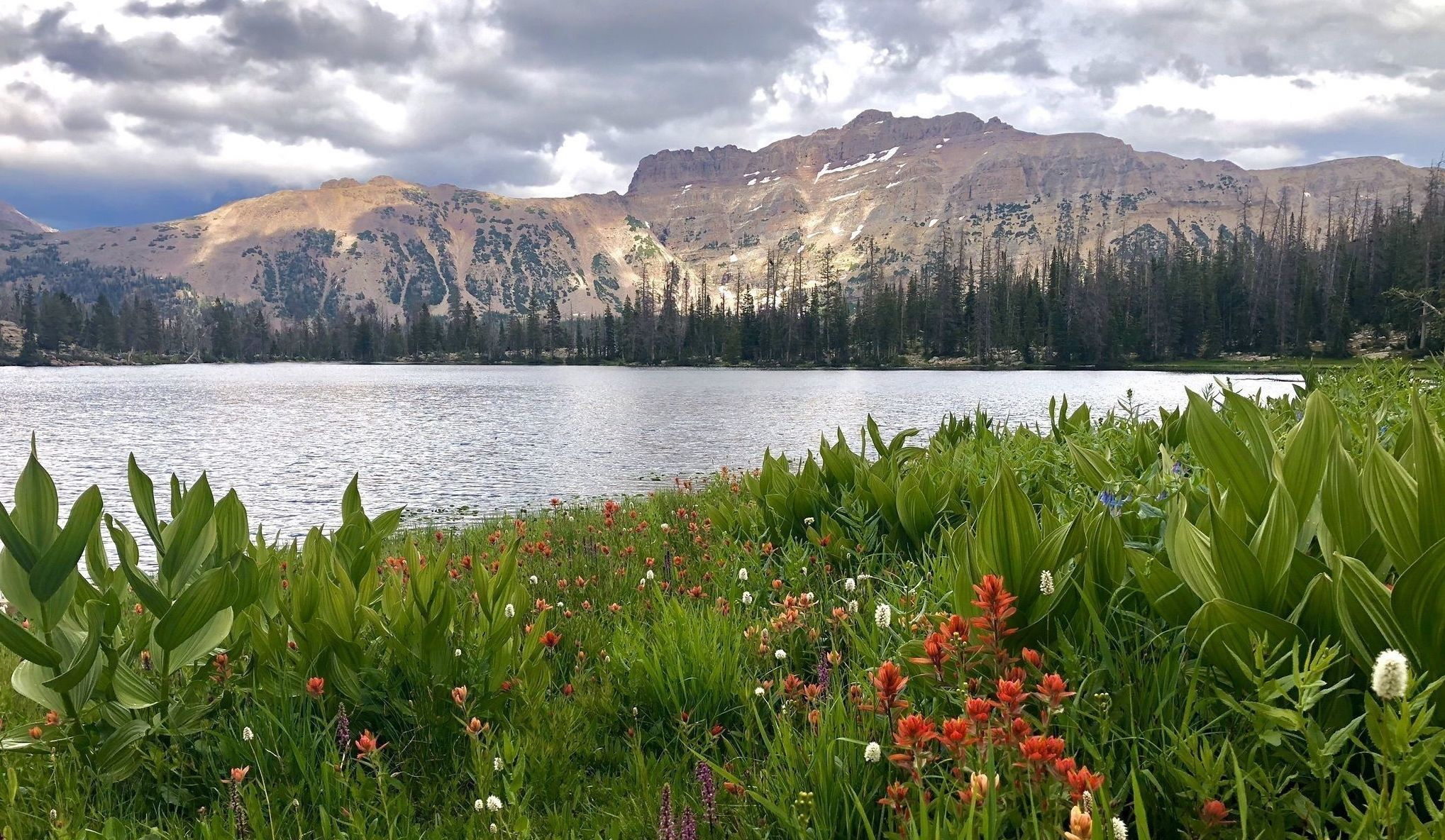 Take The Short, Easy Trail To Ruth Lake For A Utah Summer Adventure With The Family