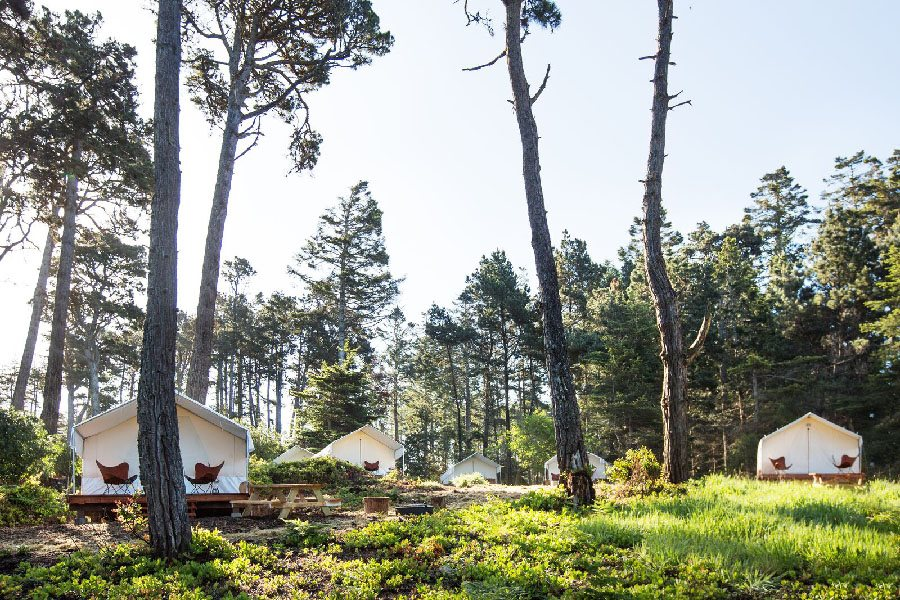 Sleep Under The Trees In A Safari Glamping Tent At Mendocino Grove In Northern California