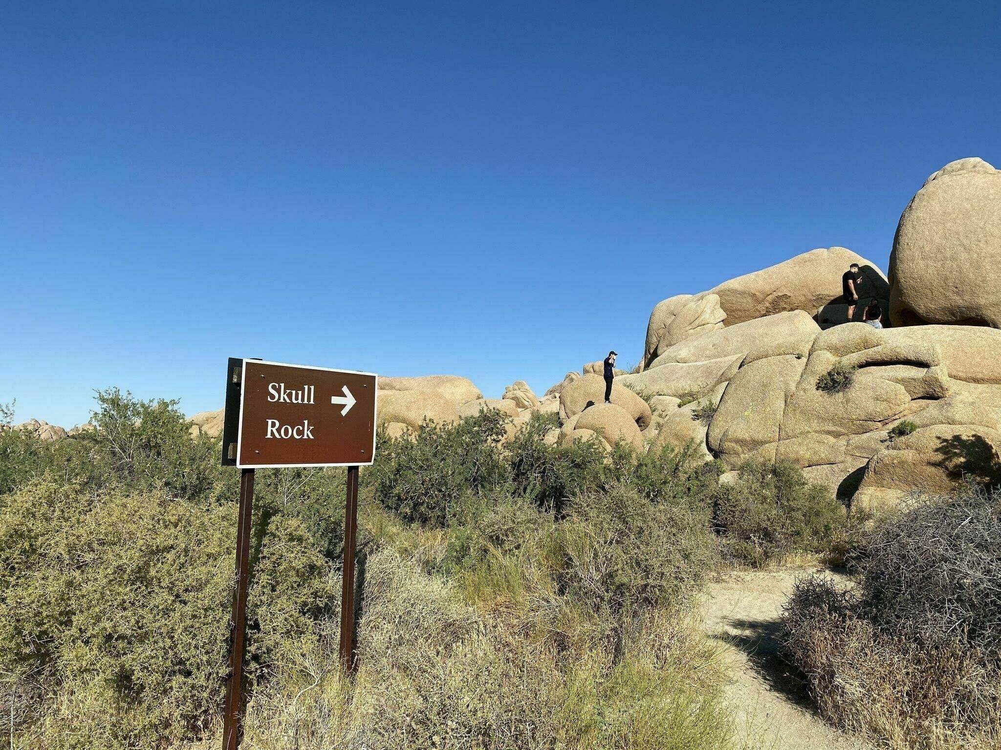 The Easy 1.5-Mile Skull Rock Nature Trail That's Tucked Inside The Southern California Desert