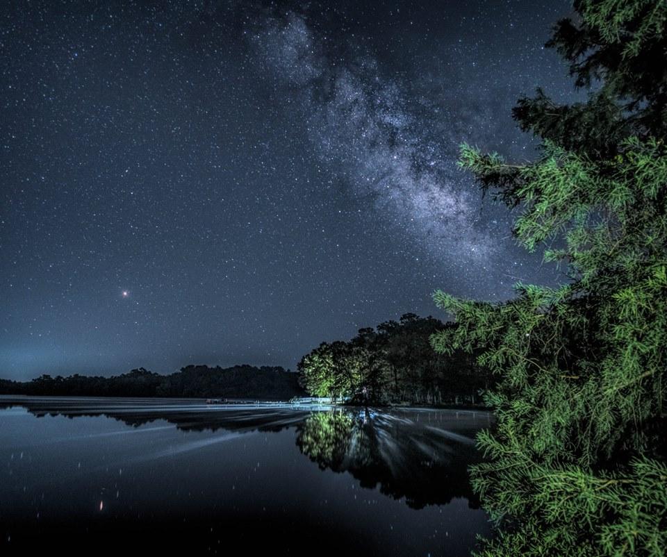 Escape To Trap Pond State Park For A Beautiful Delaware Nature Scene