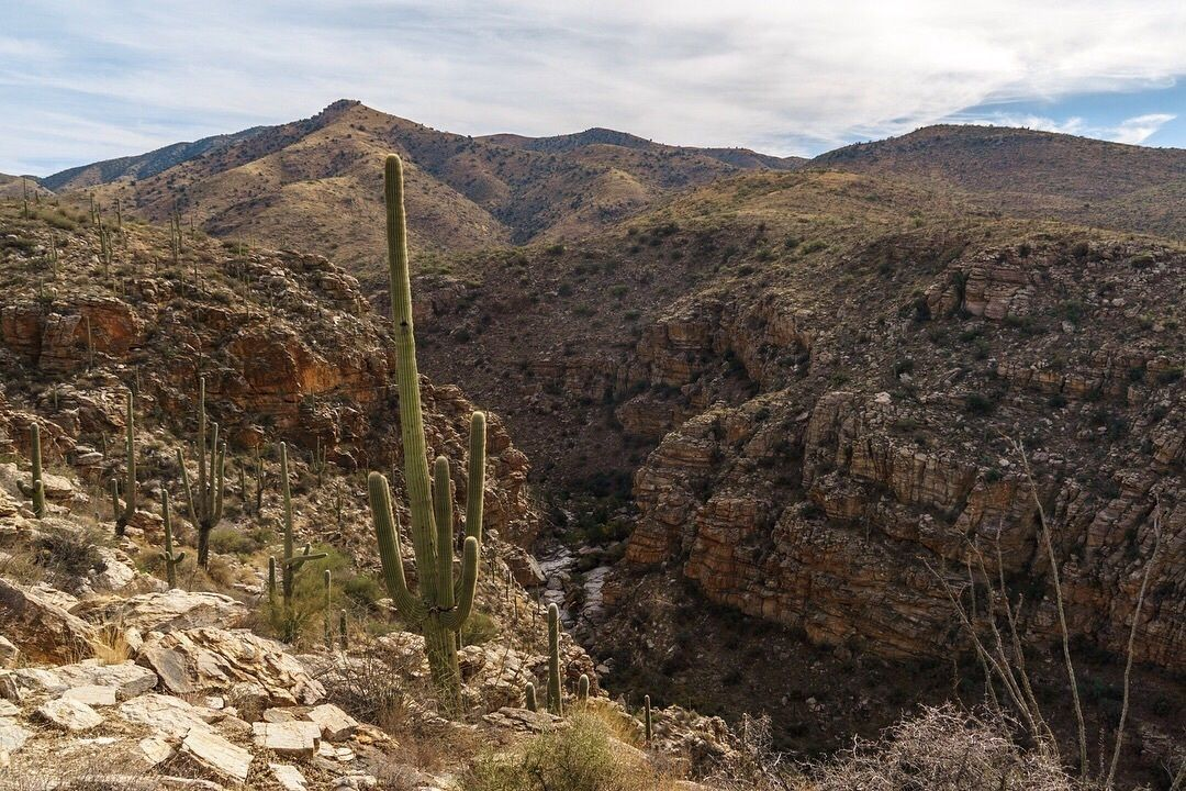 Hidden Deep In The Arizona Desert, La Milagrosa Canyon Is One Of The Most Underrated Natural Wonders Around