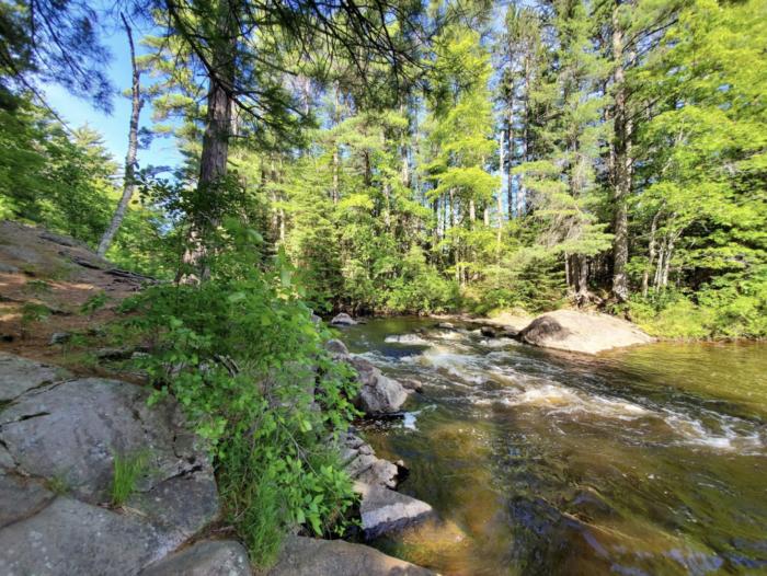 Camp Along A River In The Woods At Farquar-Metsa Tourist Park In Michigan's Upper Peninsula