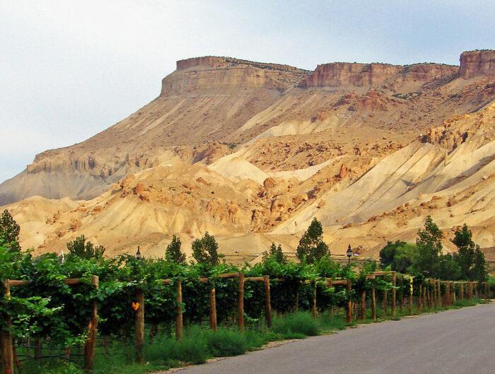 Happy Birthday, Colorado, Here's 13 Reasons We Love You
